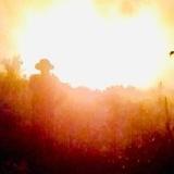 Chỉ 5 ngày cả nước có tới 45 vụ cháy rừng