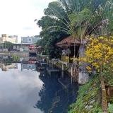 Yêu cầu xử lý hồ ô nhiễm nhất nhì Đà Nẵng trước Tết Canh Tý