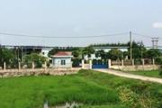 """Dân """"kêu cứu"""" với Bộ TN-MT về Công ty nấu dầu gây ô nhiễm ở Nam Định"""