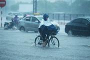 Thời tiết hôm nay 19/7: Bắc Bộ tiếp tục mưa to trong 3 ngày tới