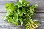 Công dụng chữa bệnh của một số loại rau thơm quen thuộc