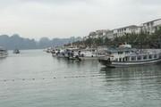 Có 90% tàu du lịch ở vịnh Hạ Long không thể lắp HT xử lý nước thải