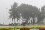 Bão số 9 càn quét gây mưa to ở Vũng Tàu