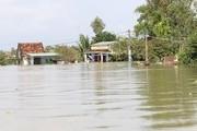Việt Nam nằm trong 10 quốc gia bị ảnh hưởng nhiều nhất vì BĐKH