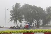 Dự báo thời tiết ngày 3/1: Bão số 1 gây mưa rất to ở Nam Bộ