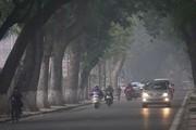 Dự báo thời tiết ngày 31/1: Hà Nội có mưa phùn vào sáng và đêm
