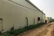 Thạch Thất: Phớt lờ chỉ đạo của UBND TP về quản lý đất nông nghiệp