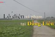 Thái Nguyên: Lộ diện vi phạm tại mô hình trồng rau an toàn