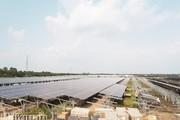 Nếm 'trái đắng' khi ồ ạt phát triển điện mặt trời
