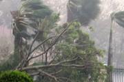 Gia Lai: Phòng ngừa ứng phó và khắc phục hậu quả thiên tai
