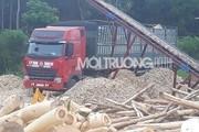Nghệ An: Xưởng gỗ dăm HTX Thịnh Kỳ hoạt động trái phép gây ô nhiễm?