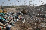 Australia đẩy mạnh cuộc chiến đối với rác thải nhựa