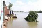 Long An: Công bố tình trạng khẩn cấp khu vực sạt lở bờ sông