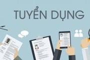 Môi trường và Đô thị Việt Nam điện tử tuyển dụng PV, BTV