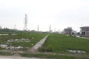 Thái Thụy - Thái Bình: Dấu hiệu bất thường trong phiên đấu giá đất