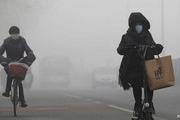Tin tức môi trường 24h mới nhất, nóng nhất ngày 17/1/2020