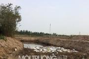 Chấn động: Nghi vấn DN chôn trộm chất thải nguy hại ở Hải Dương