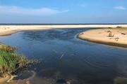 Quảng Bình: Hồ nuôi tôm xả thải, Sở TN&MT kiên quyết thu hồi đất
