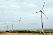 Quảng Bình ủng hộ nhà đầu tư làm điện gió