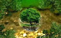 Vinh danh 7 anh hùng môi trường