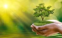 Công bố quốc tế lĩnh vực môi trường số 19