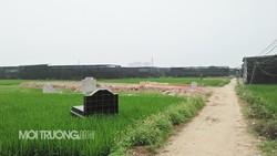 Hoài Đức: Đất nông nghiệp đã biến thành nhà xưởng như thế nào?