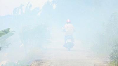 """""""Ớn lạnh"""" việc đốt đồng ở miền Tây gây tiềm ẩn tai nạn giao thông"""