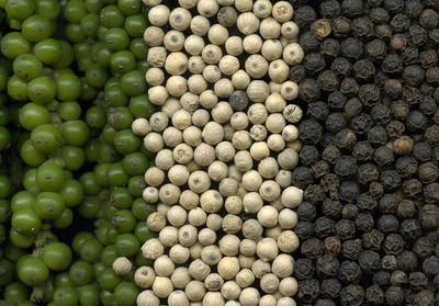 Giá nông sản hôm nay 8/8: Giá tiêu tăng trở lại, giá cà phê giảm