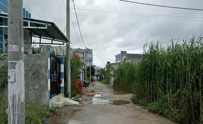 TP Cần Thơ: Yêu cầu kiểm tra, xử lý các khu dân cư tự phát