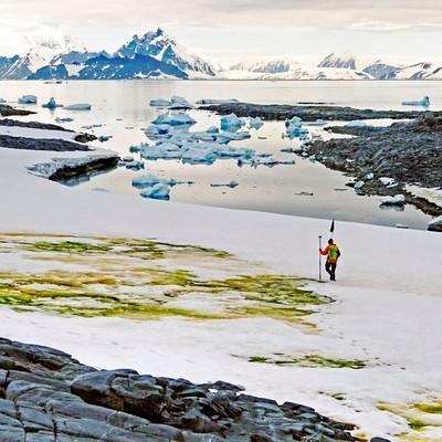 BĐKH tuyết Nam Cực chuyển màu xanh, lời cảnh tỉnh cho nhân loại