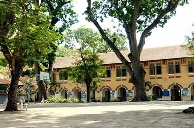 Nhập nhằng quản lý cây xanh trong trường học