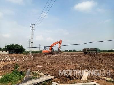 UBND tỉnh Hưng Yên xử phạt Công ty Hoàng Gia 100 triệu đồng